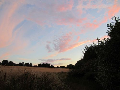 Sunset, North Downs