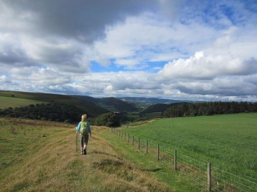 Offa's Dyke near Kington